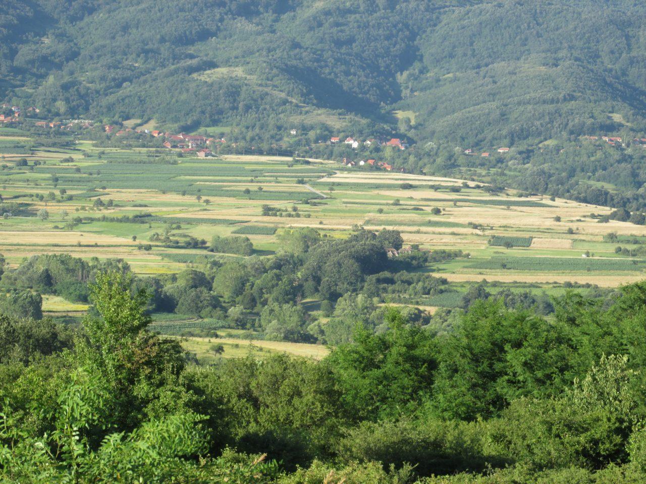 Zeleno srce Srbije – iliti ravnica pohodi planine